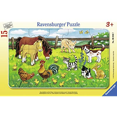 Farm Animals in The Meadow: Toys & Games
