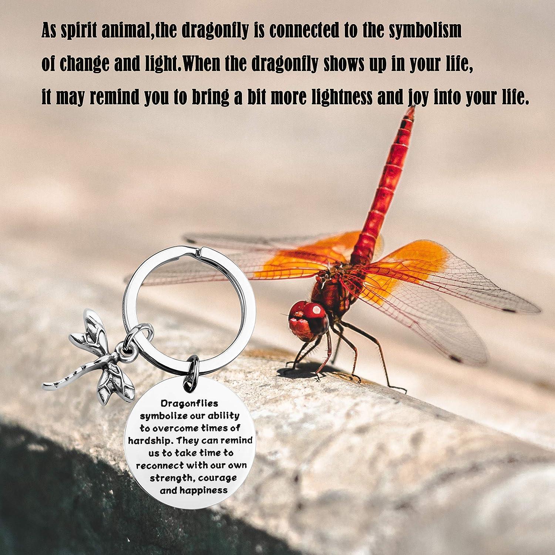 Amazon Com Maofaed Drangonflies Symbolize Our Ability Symbolize Our Ability Jewelry