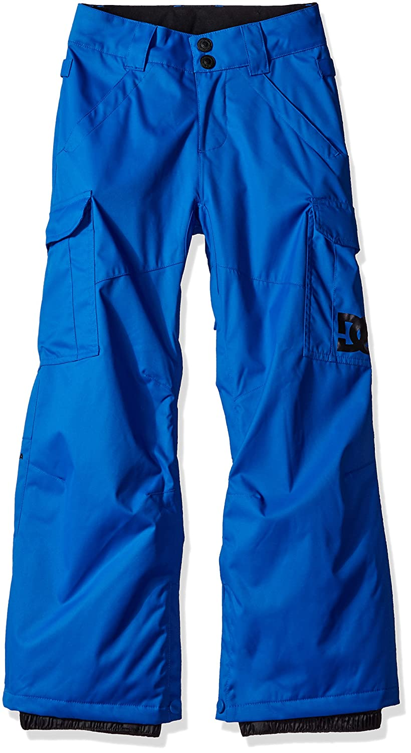 DC Shoes boys Big Boys Banshee Youth Snow Pant EDBTP03003