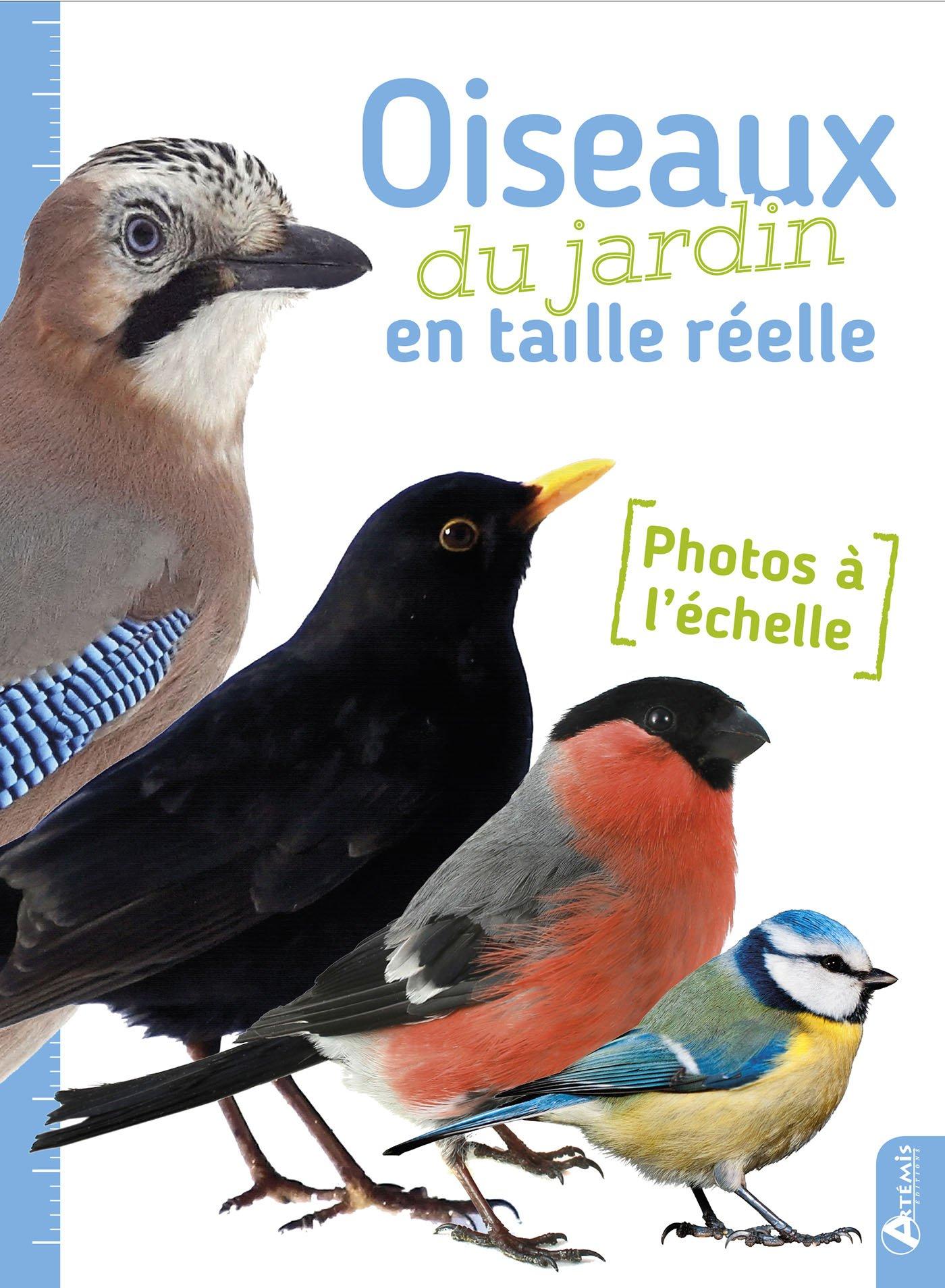 Les oiseaux du jardin en taille réelle Broché – 4 avril 2017 Anne Eydoux Jacques Theillard Artémis Editions Artémis