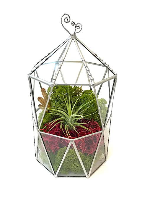 Jaula octogonal con techo, terrario, maceta de cristal geométrico, maceta moderna, hecha