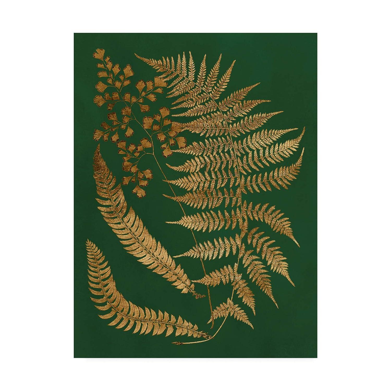 Trademark Fine Art Gilded Ferns I by Vision Studio, 14x19