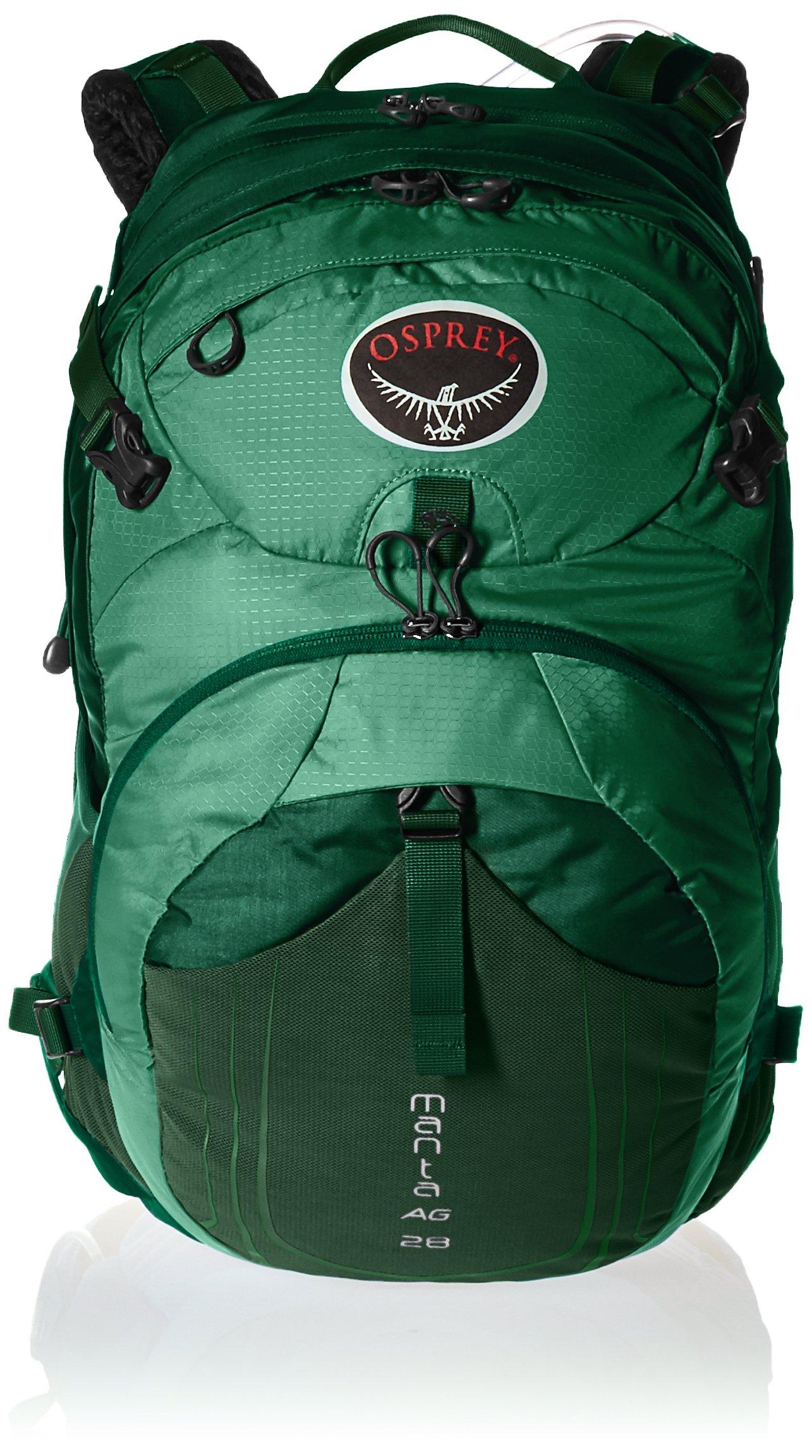 Osprey Packs Manta AG 28, Spruce Green Medium/Large