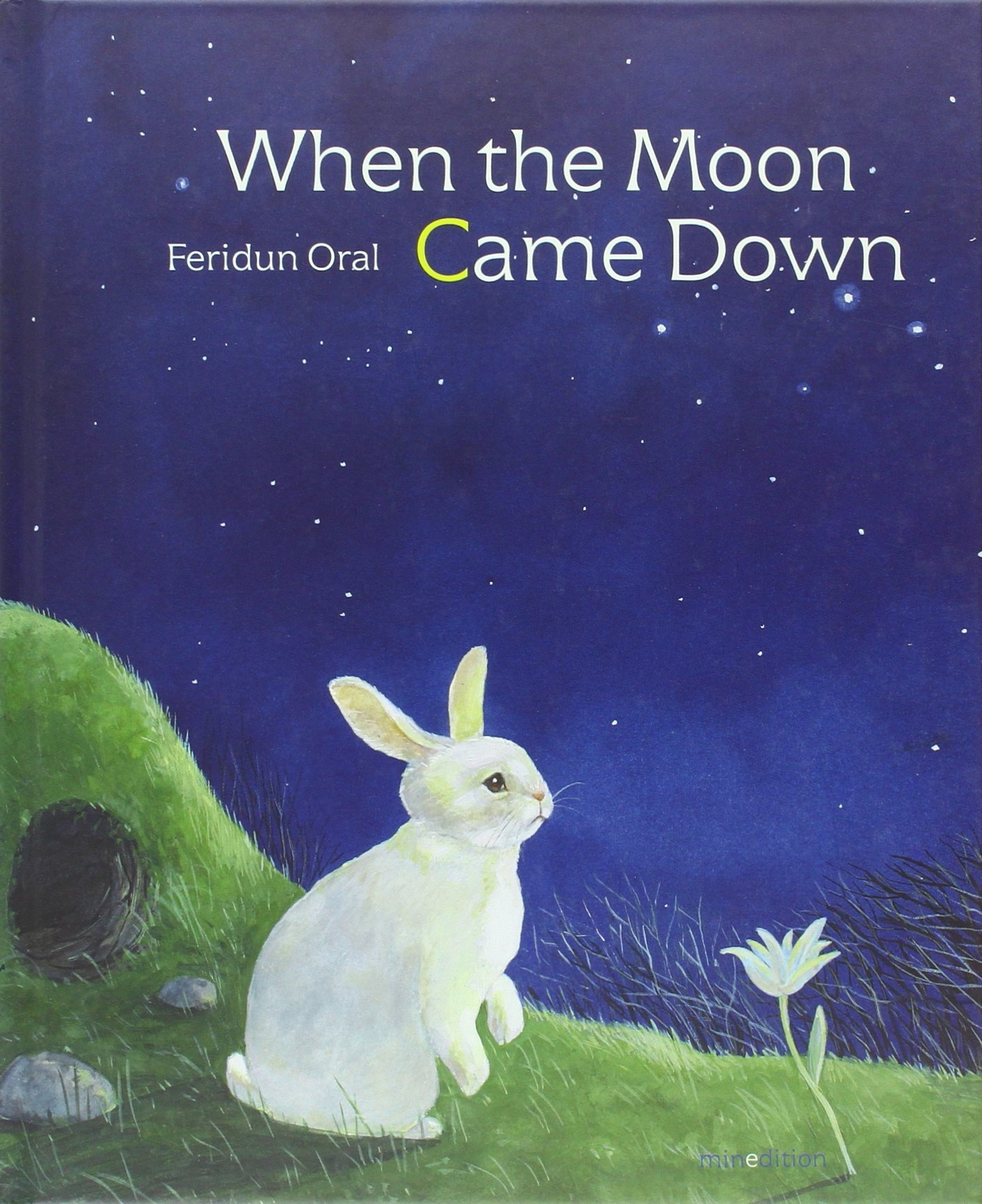 Download When the Moon Came Down pdf
