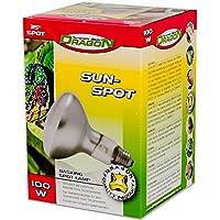 Dragon Sun Spot 100 W