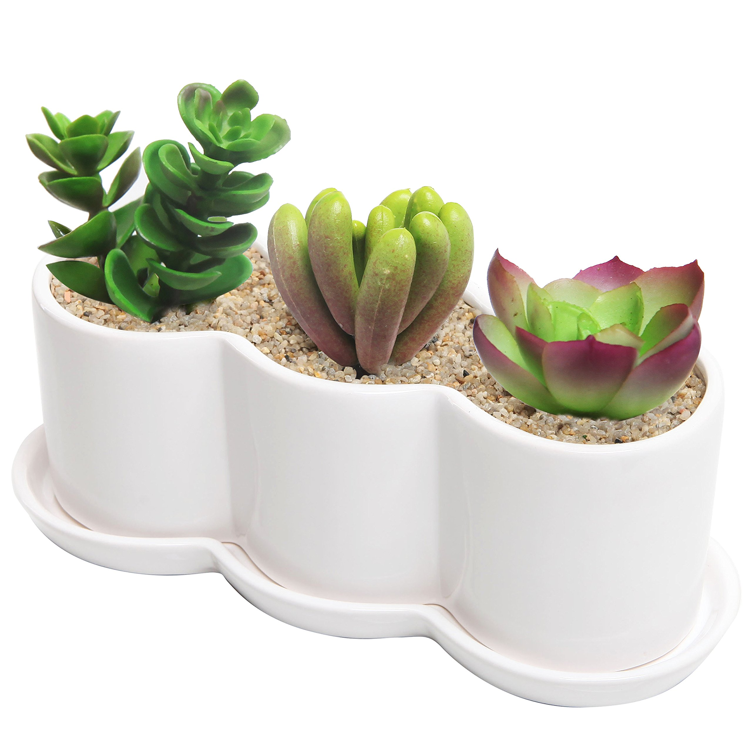 Modern Ceramic Succulent Plant Box with Saucer / 12 inch White Windowsill Planter