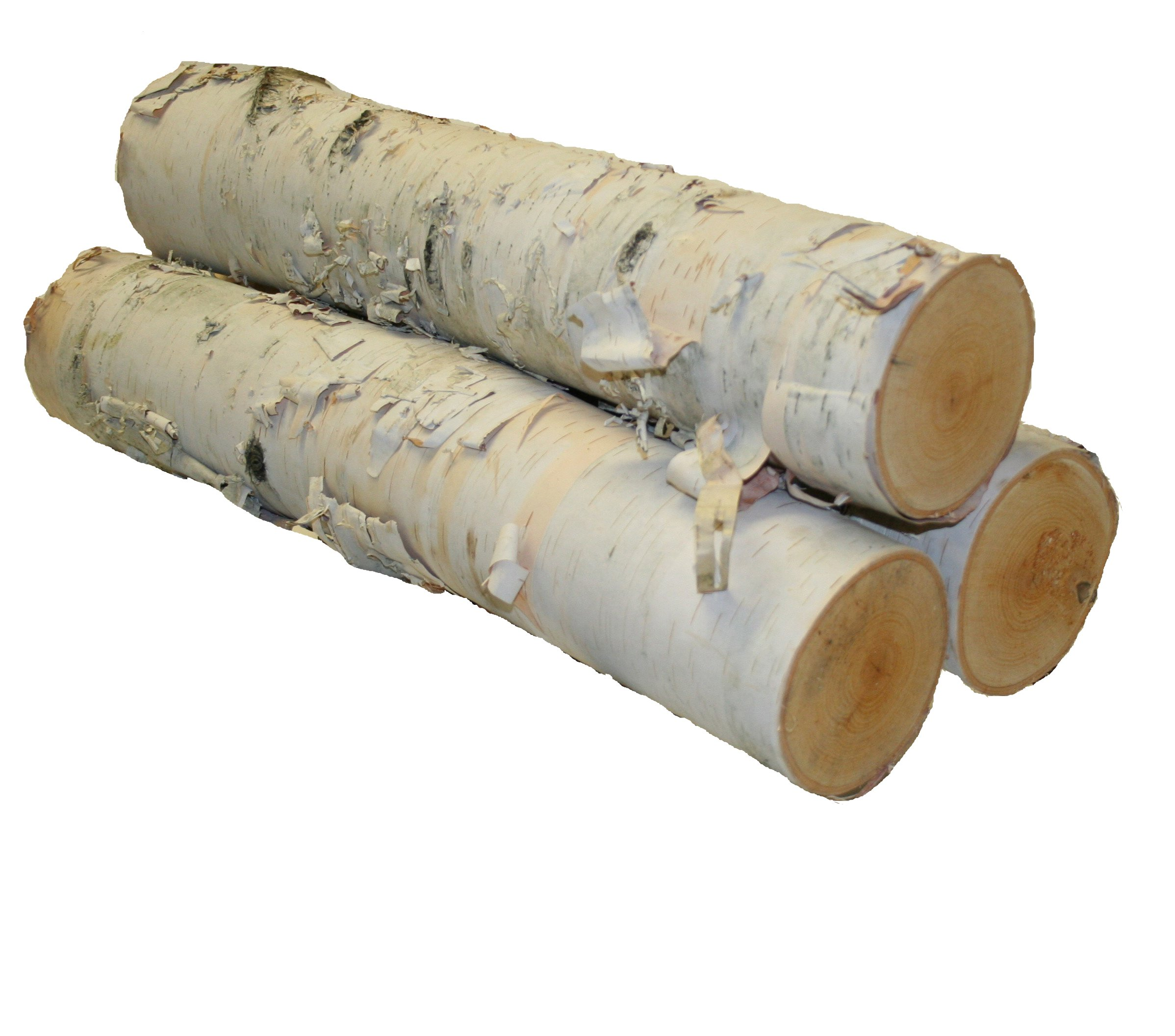 Wilson Enterprises Large Logs, Set of 3, White Birch by Wilson Enterprises