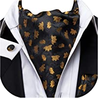 Dubulle Mens Cravat Ascot Scarf Tie and Pocket Square Set with Cufflinks