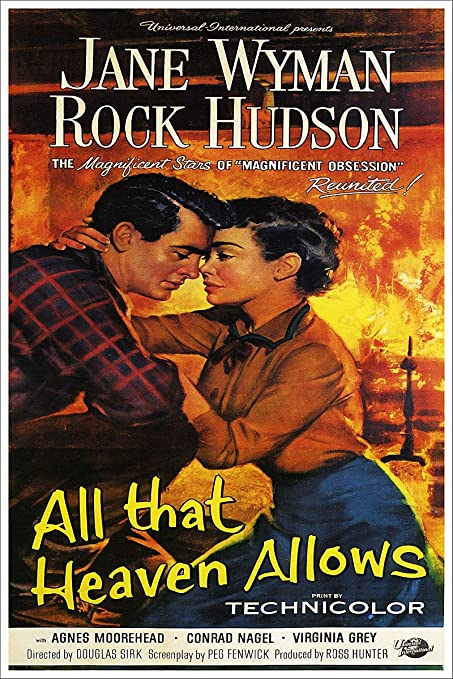 Image result for all that heaven allows poster