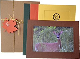 product image for Fall Collection - 4x6 Photo Insert Note Cards - 24 Pack by Plymouth Cards