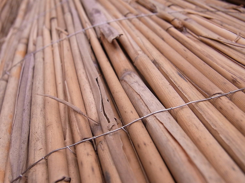 Amazon De Schilfmatte Sichtschutz Schilfrohrmatte Windschutz
