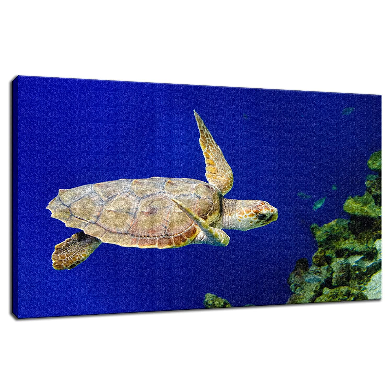 CANVAS Green Sea Turtle 1 Art print POSTER