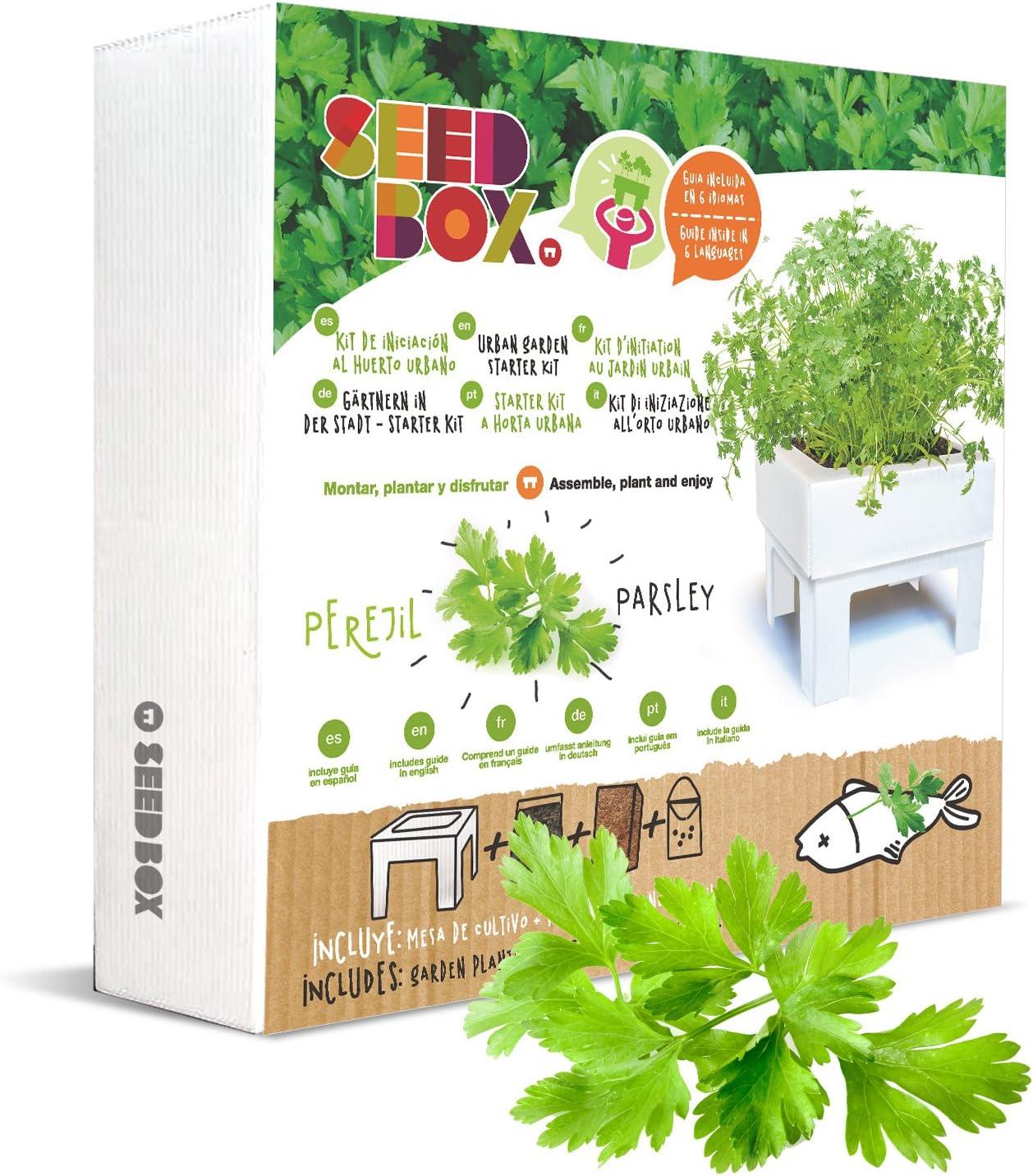 SeedBox SBMCUPE Huerto Urbano Cultívame Mini - perejil, 17x4x17 cm
