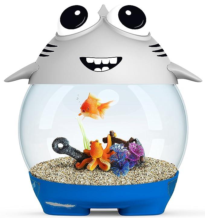 Ciano Acuario My Acuario Shark para acuariofilia Gris: Amazon.es: Productos para mascotas