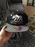 $10 LAFSQ HAT apparel snapback