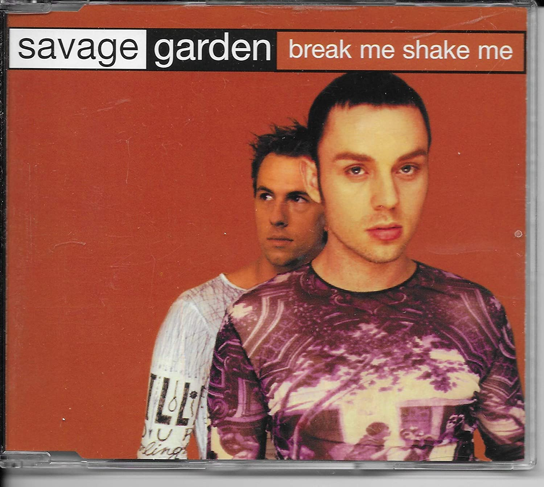 Break Me Shake Me