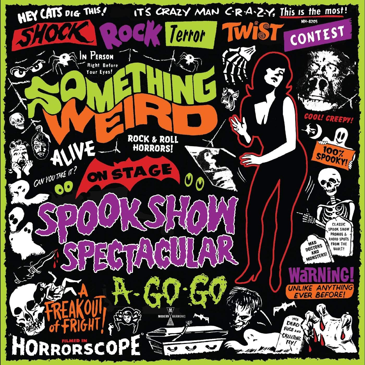 SPOOK SHOW VINTAGE STYLE HAUNTED ATTRACTION THE HORROR SHOW ART POSTER PRINT