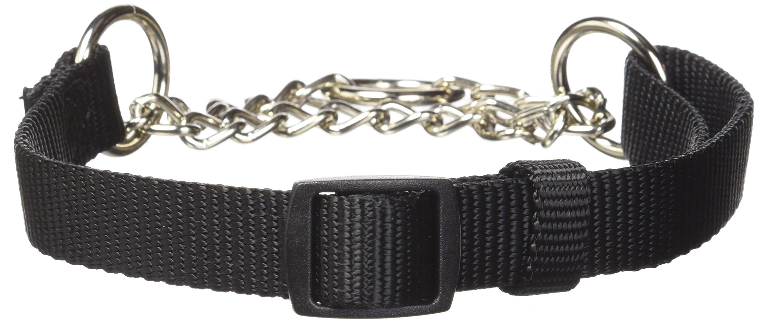 Hamilton Adjustable Combo Choke Dog Collar
