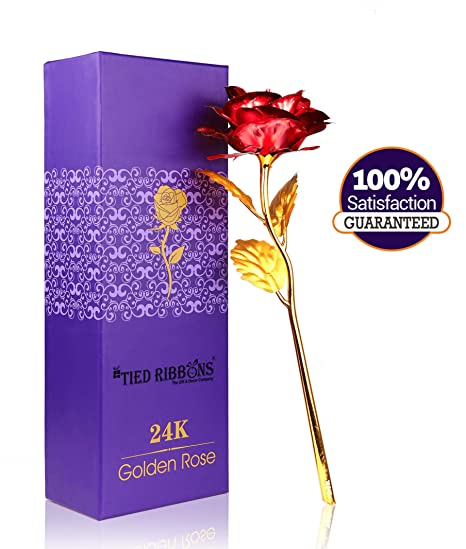 6da37fbdb971 Buy TIED RIBBONS Best Valentine s Gift for Girlfriend Boyfriend Husband  Wife Him Her 24K Gold Plated Rose Online at Low Prices in India - Amazon.in
