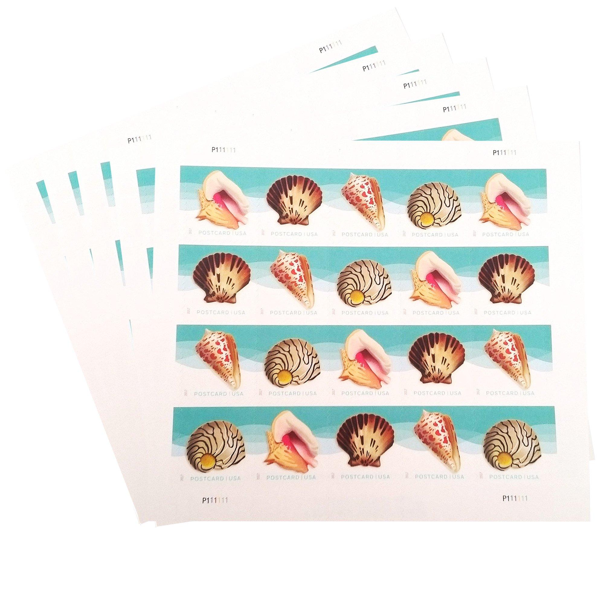 Seashells Postcard Stamp USPS Forever Stamps, Sheet of 20 - US Postage Card Stamps (5 Sheets of 20 Stamps)