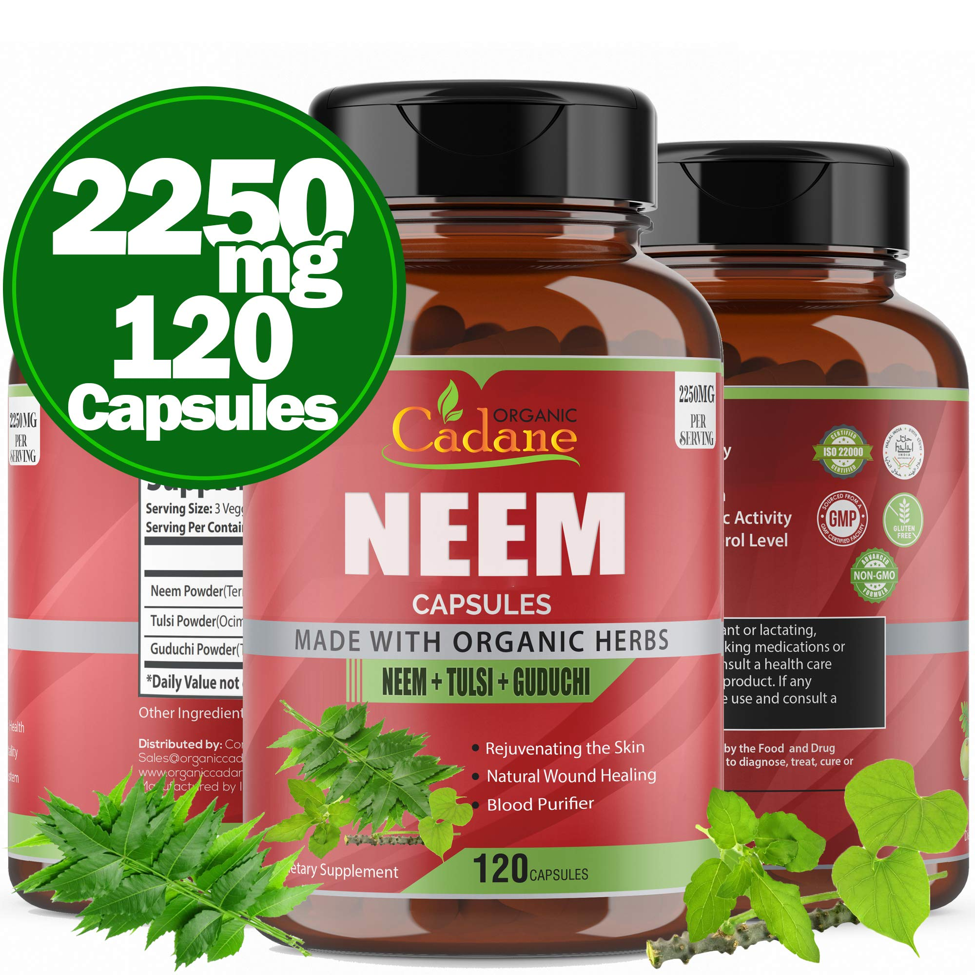 Organic Neem Leaf Powder Capsules 2250mg with Tulsi, Guduchi Extract | Blood Purifier and Detoxification Herbs | Healthy Hair and Skin Care Supplement | Support Antioxidants Immune System,120 Caps
