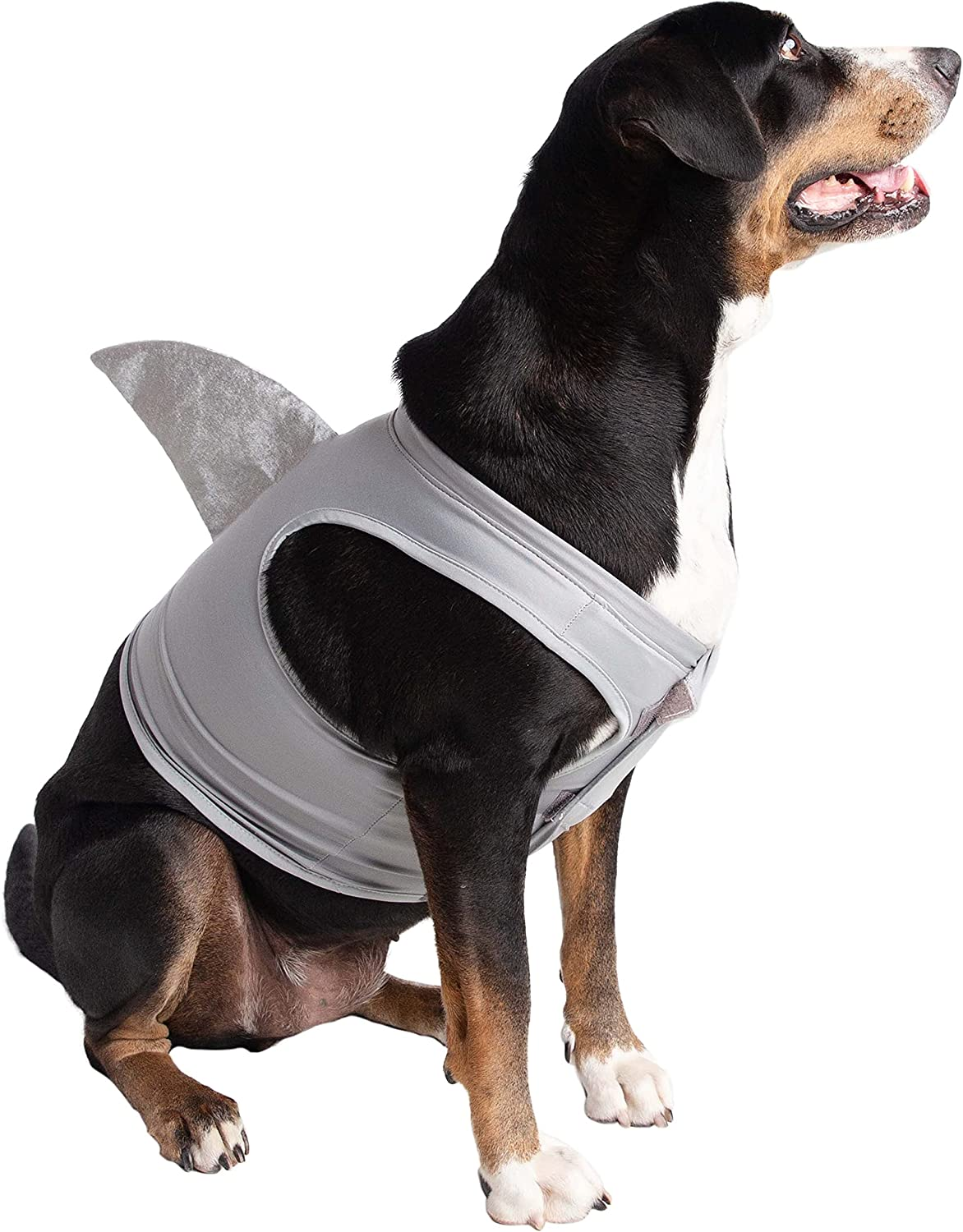 Pet Krewe Dog Shark Costume | Pet Costume for Dogs 1st Birthday, National Cat Day & Celebrations | Halloween Outfit for Small and Large Cats & Dogs (Large)
