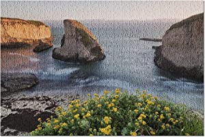 Davenport, Santa Cruz County, California - Shark Fin Cove 9026888 (Premium 500 Piece Jigsaw Puzzle for Adults, 13x19, Made in USA!)
