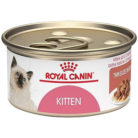Rcfhn Kitten Instinctive24/3oz