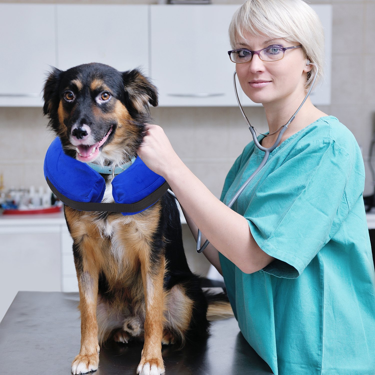 PetAZ Recovery Inflatable Collar for Dogs