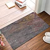 Olivefox 30x18 Inch Funny Waterproof Bathroom Doormat Home Decor Welcome Large Mat Entrance Way Indoor/Outdoor Carpet Floor Rugs, Rustic Vintage Old Stone Textured by