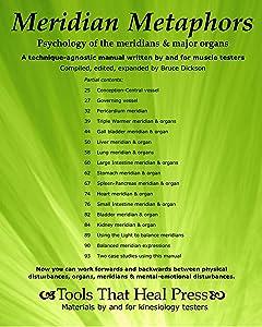 Meridian Metaphors, Psychology of the Meridians and Major Organs (Best Practices in Energy Medicine Series Book 3)