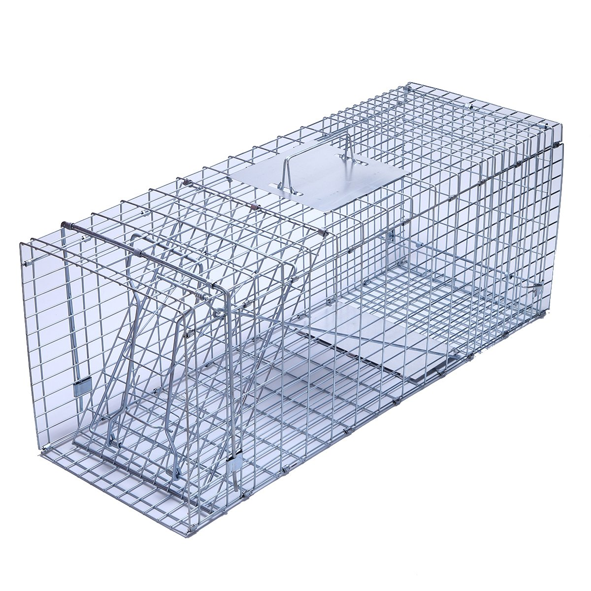 Trapro Large Collapsible Humane Live Animal Cage Trap for Raccoon, Opossum, Stray Cat, Rabbit, Groundhog and Armadillo - 32'' x 11'' x 13''