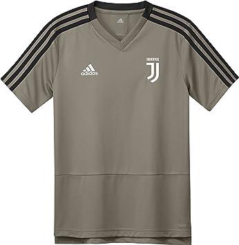 adidas 2018-2019 Juventus Training Football Soccer T-Shirt Camiseta (Clay) - Kids: Amazon.es: Deportes y aire libre