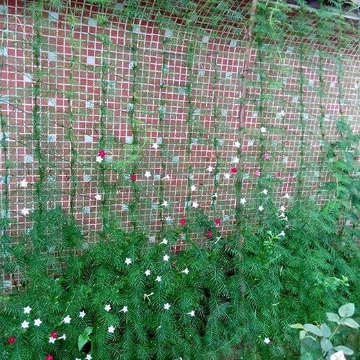 Quanjucheer - Red de enrejado para plantas de escalada, malla de nailon para verduras, verde