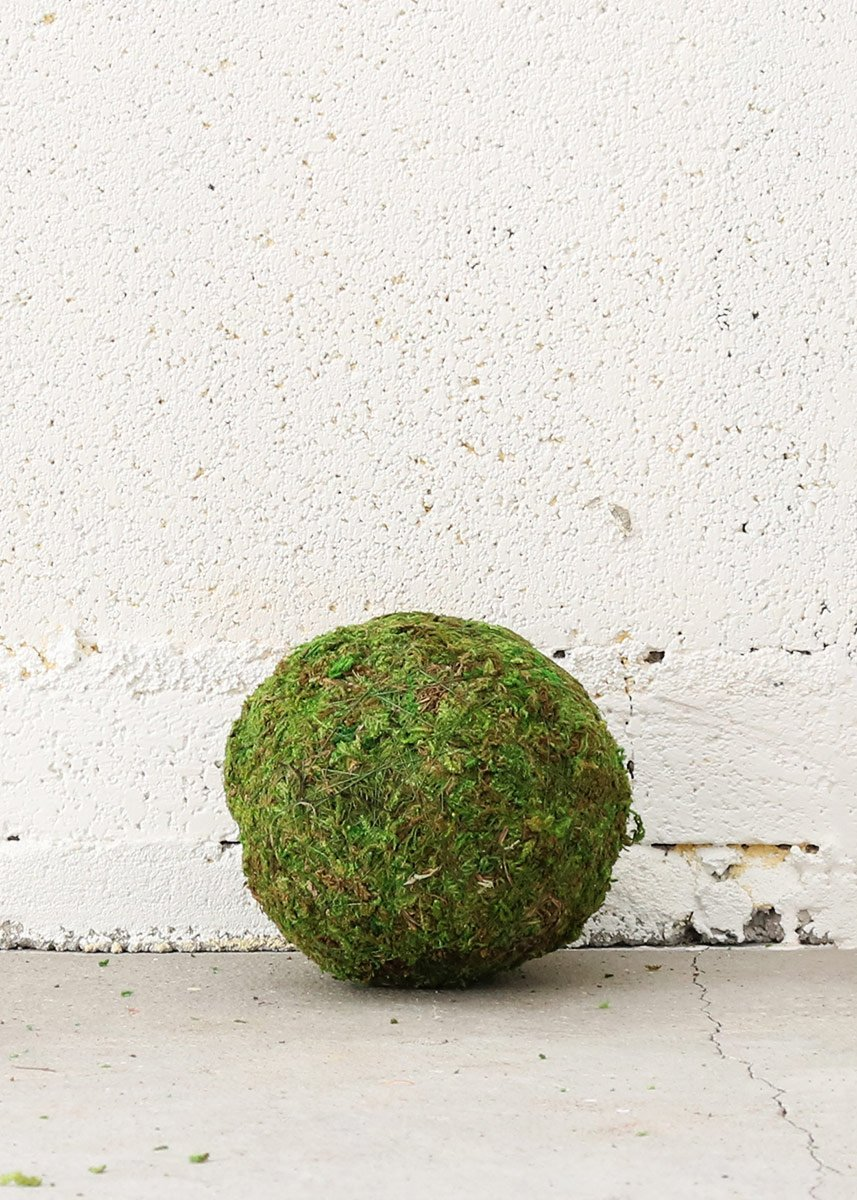 4 Wide Accent Natural Green Moss Ball