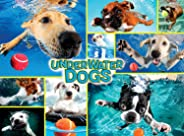 Buffalo Games - Collage Collection - Underwater Dogs - 1000 Piece Jigsaw Puzzle