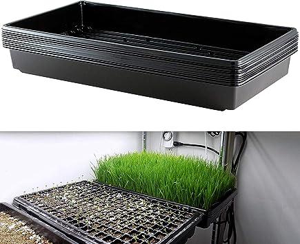 5 Pack Plant Growing Trays Gardening Growing Microgreens Wheatgrass Seed Starter