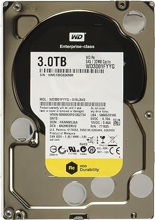 Western Digital WD3001FYYG - Disco Duro sólido Interno SSD de 3000 ...