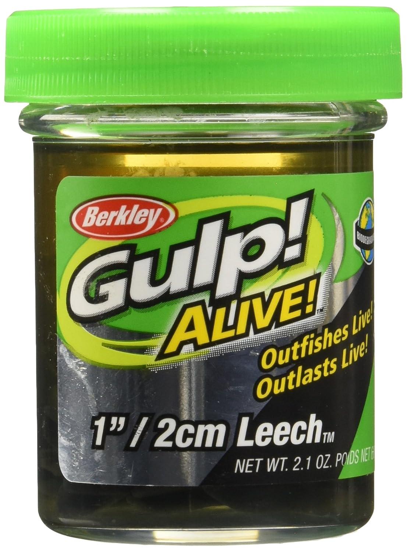 Buy Berkley Gulp Alive Leech Online at Low Prices in India
