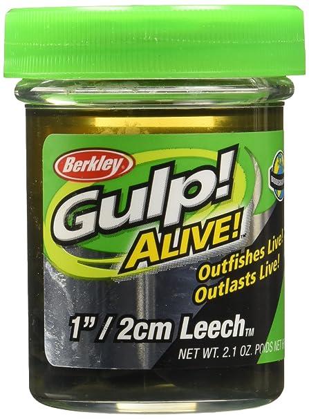 Buy Berkley Gulp Alive Leech Online at Low Prices in India - Amazon in