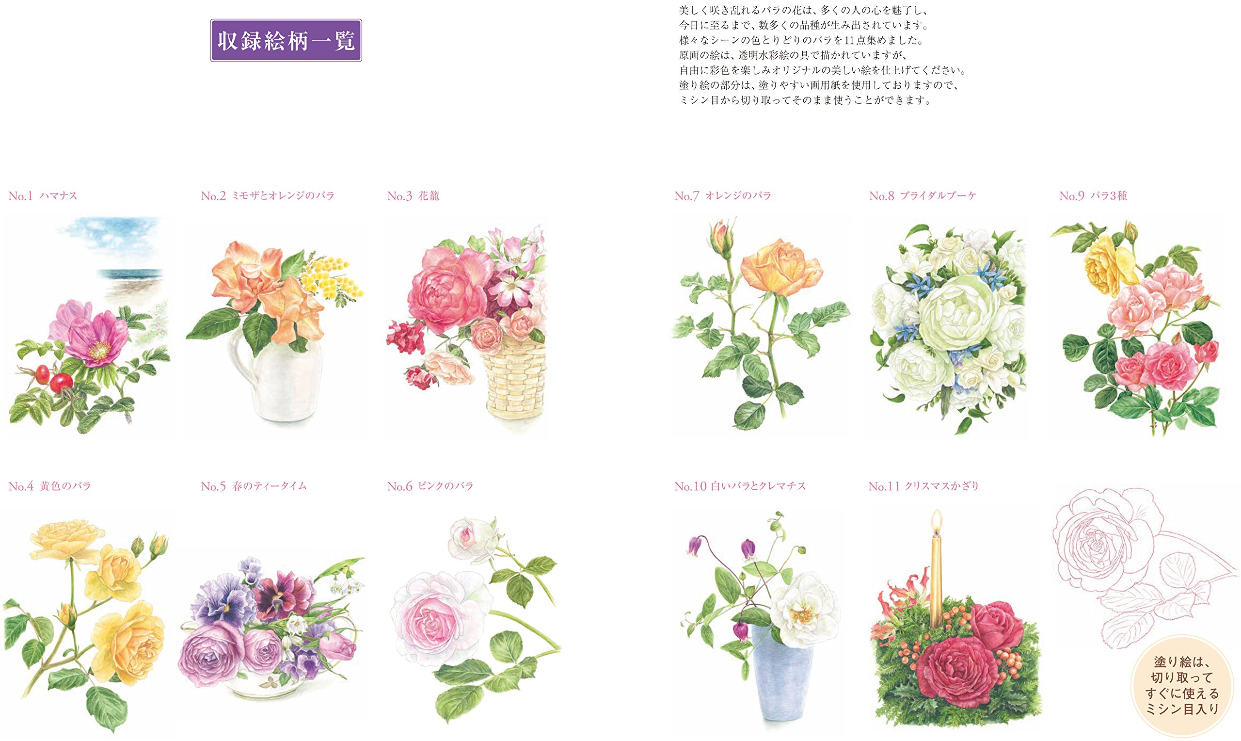 大人の塗り絵 美しいバラ編 佐々木 由美子 本 通販 Amazon