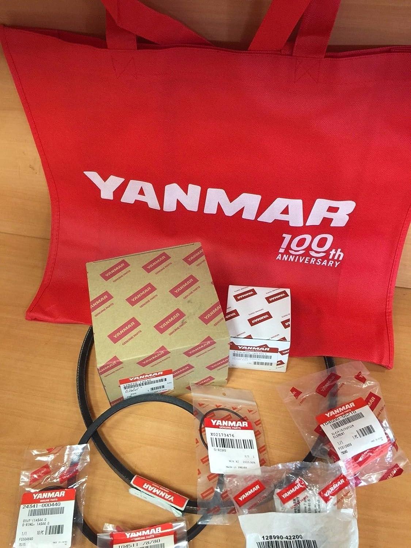 Yanmar 3YM20 3YM30 Maintenance Minor Kit SK019 119305-35151 104500-55710
