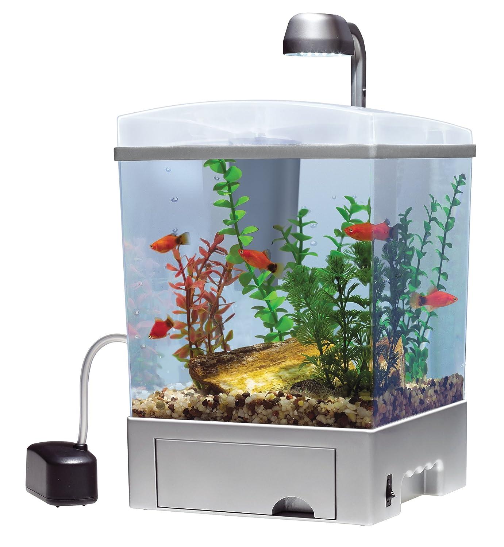 Fish aquarium price in india - Amazon Com Tetra Aquarium Kit Silver Aquarium Starter Kits Pet Supplies