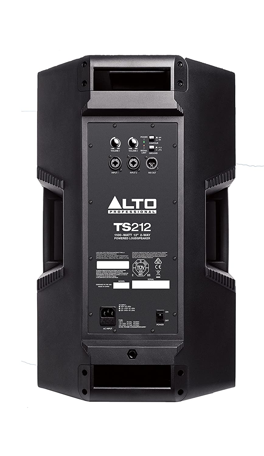 Back facing alto professional ts212