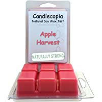 Candlecopia Strongly Scented Hand Poured Vegan Wax Melts, 12 Scented Wax Cubes, 6.4 Ounces in 2 x 6-Packs