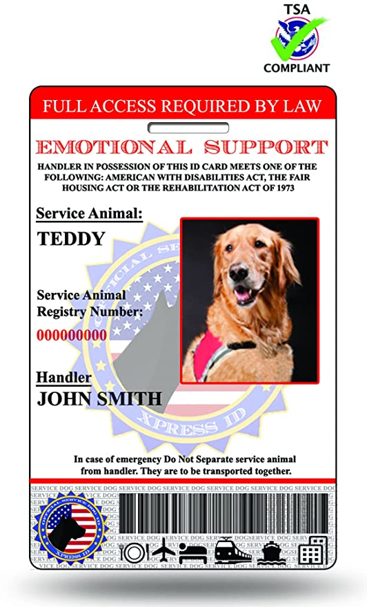 .com : xpressid emotional support animal id card with ...