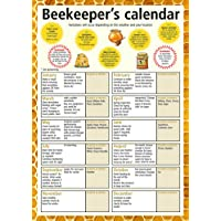 A3 Beekeeper's calendar/poster. Ideal small gift for mother's day, father's day, classrooms or schools offering apiary lessons. Choice of laminated or not laminated (Please read description for differences between lamination and encapsulation). Supplied folded flat to A4 to reduce postage costs