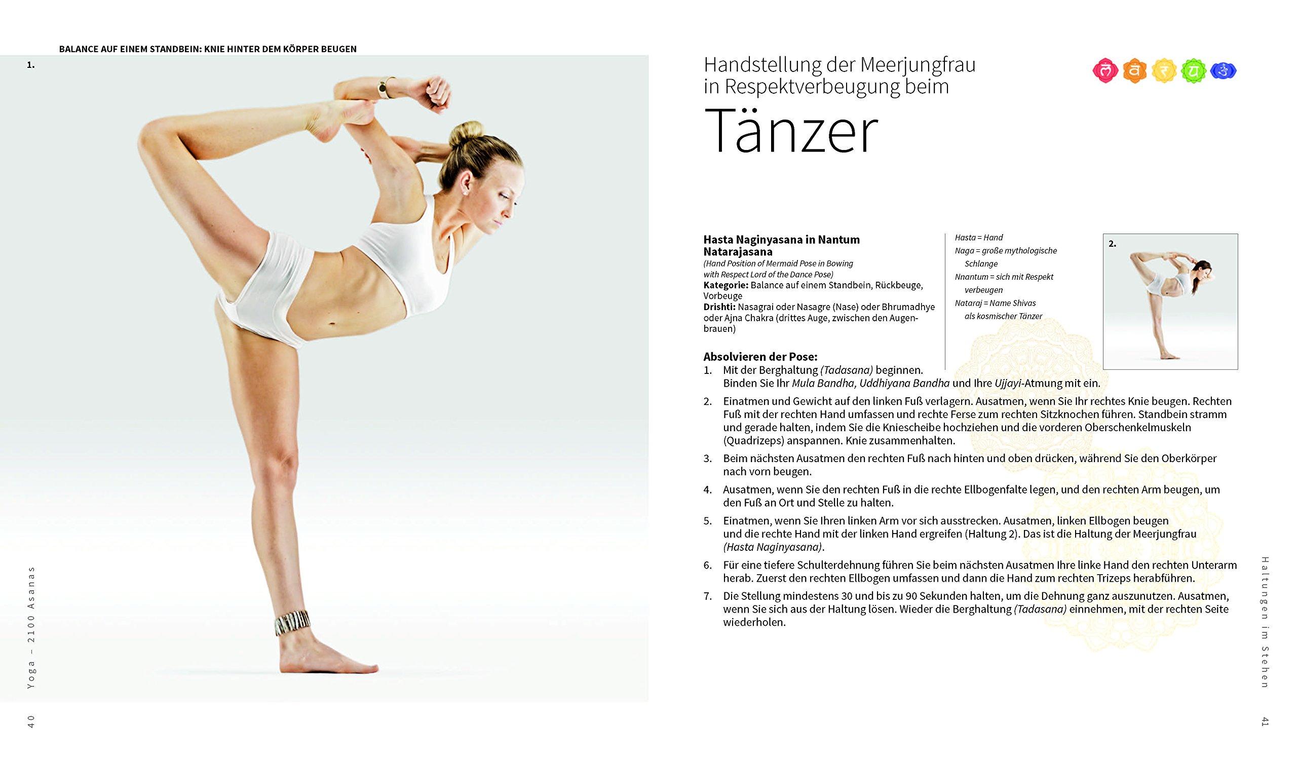 Ungewöhnlich Hinter Dem Knie Anatomie Galerie - Physiologie Von ...