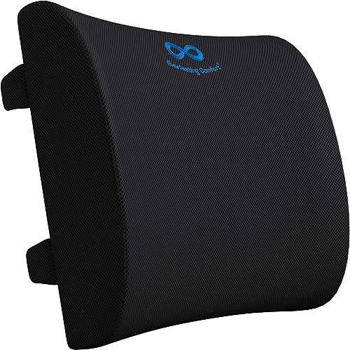 Everlasting Comfort Lumbar Support Memory Foam Back Cushion for Cars