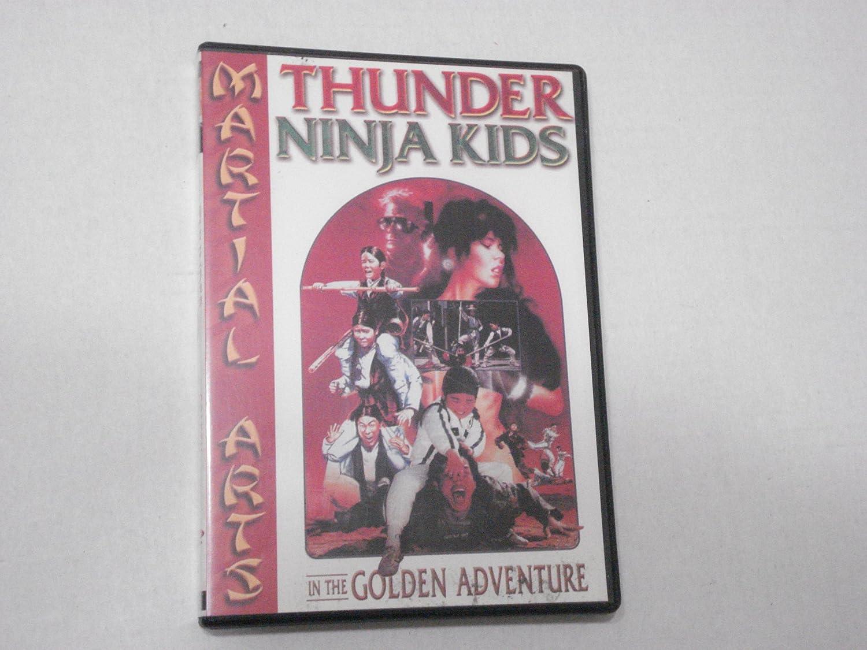 Thunder Ninja Kids in the Golden Adventure USA DVD: Amazon ...